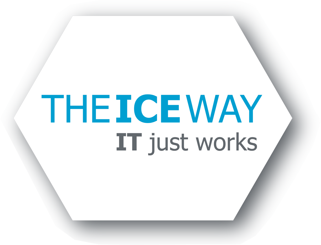 The ICE Way