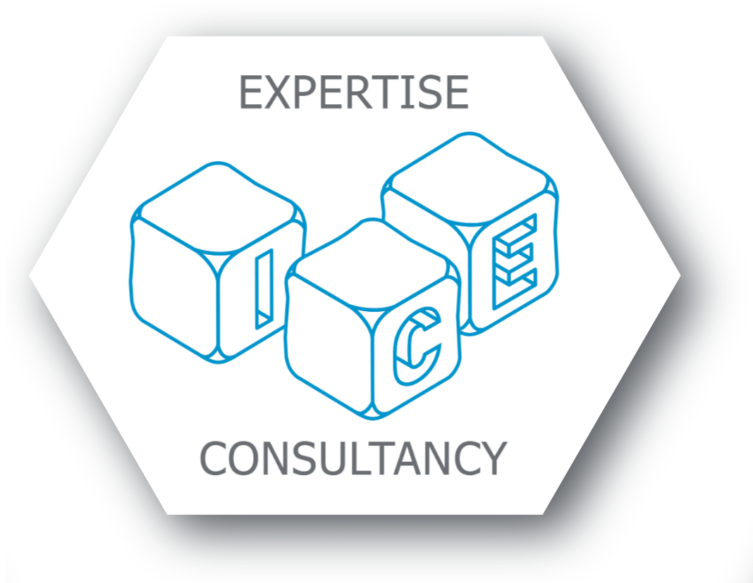 ICE Consultancy